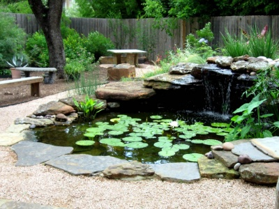 A beautiful pond in your backyard
